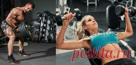 Путь к здоровью: ПРАВИЛЬНОЕ ПИТАНИЕ ДЛЯ РОСТА МЫШЦ и НАБОРА ВЕСА.  Правильное питание  для набора мышечной массы так же важно, как и физические тренировки. Пища выполняет функцию строительного материала, из которого организм берет все, что ему нужно для роста мышц. В случае с набором мышечной массы работает тот же принцип что и с похудением, только в обратном порядке. Если вы хотите набирать вес, нужно больше потреблять калорий, чем тратится в день вашим организмом.