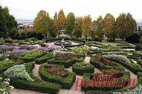 Сад зона отдыха