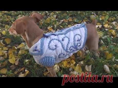 Куртка для собачки вязаная крючком-МК