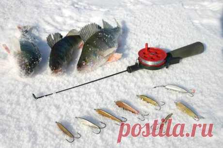 Ловля на блесну зимой - снасти, места ловли, игра приманкой | GOFISHING CLUB | Яндекс Дзен