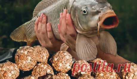 Секретная насадка, родом из Алтая от которой рыба дуреет