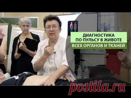 Диагностика по пульсу в животе, всех органов и тканей