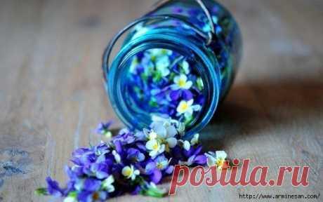 Как создать потрясающий цветочный запах в комнате?.