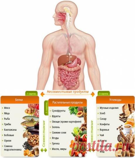 5 золотых правил правильного питания