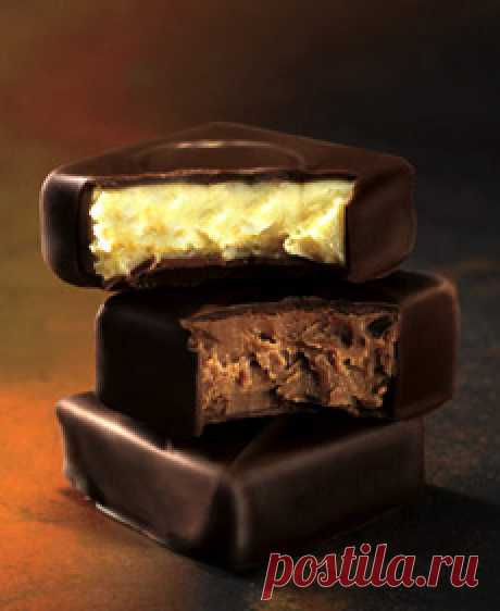 Мое шоколадное хобби