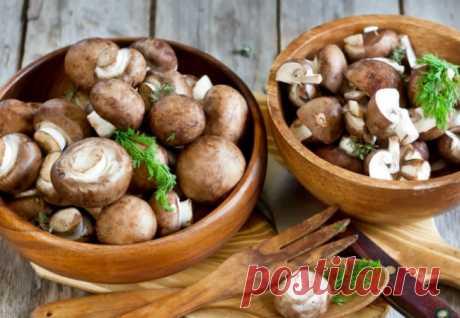 Почему нужно есть больше грибов | Краше Всех