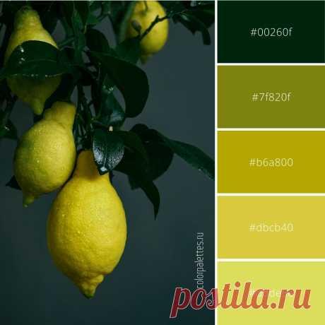 Лимонная цветовая палитра.  Гармоничное сочетание желтого, желто-зеленого, салатового и зеленого цветов в палитре. #цвет #палитрацветов #сочетаниецветов #кодцвета #вдохновениецветом #желтыеоттенки