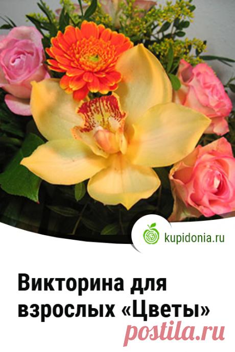 Викторина для взрослых «Цветы». Интересная викторина о цветах для взрослой аудитории. Проверьте свои знания!