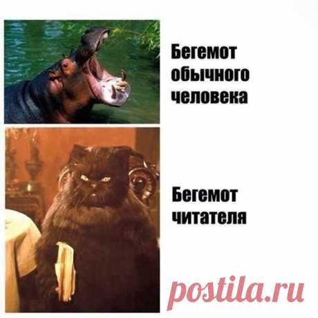лучшие смешные картинки с подписями...много!))) присоединяйтесь! ПРИКОЛЫ ЮМОР ШУТКИ ツ группа фейсбук