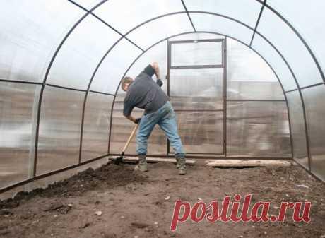 Эффективные методы обработки теплиц после уборки урожая