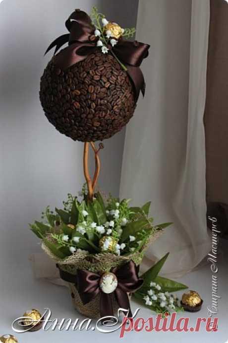 Кофейное дерево,топиарий,флористика,сладкие композиции и букеты.... | Страна Мастеров