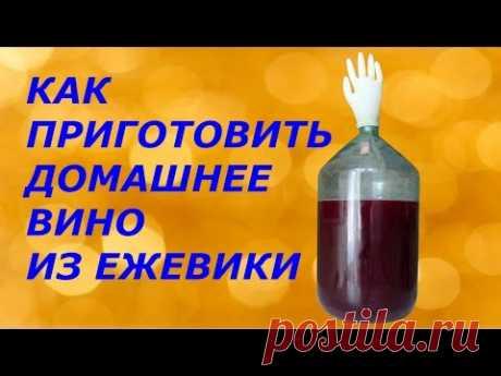 Как самому приготовить вино из ежевики