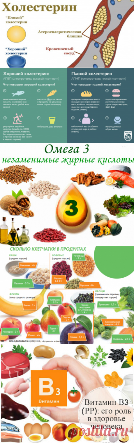 Естественное снижение уровня холестерина: 5 основных и главных секретов | Кладовая здоровья | Яндекс Дзен