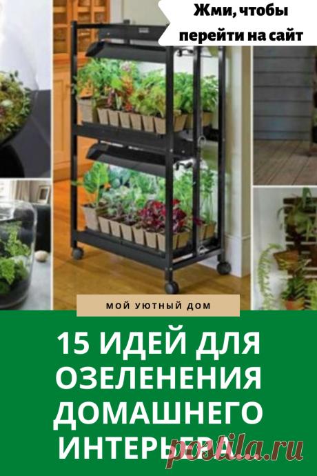 Как красиво озеленить интерьер квартиры