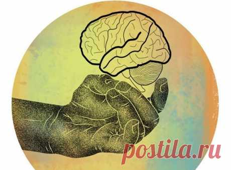 Супер упражнения для развития мозга и улучшения памяти - Советы и Рецепты Хочу представить вам достаточно простые упражнения, которые служат для развития вашего мозга и повышения его функциональных возможностей Упражнения выполняются пальцами обеих рук и поэтому называются «пальцовки». Упражнения «Пальцовки»: улучшают память, развивают согласованную работу полушарий мозга, повышают скорость мышления, скорость принятия решений, скорость реакции, выстраивают новые нейронные ...