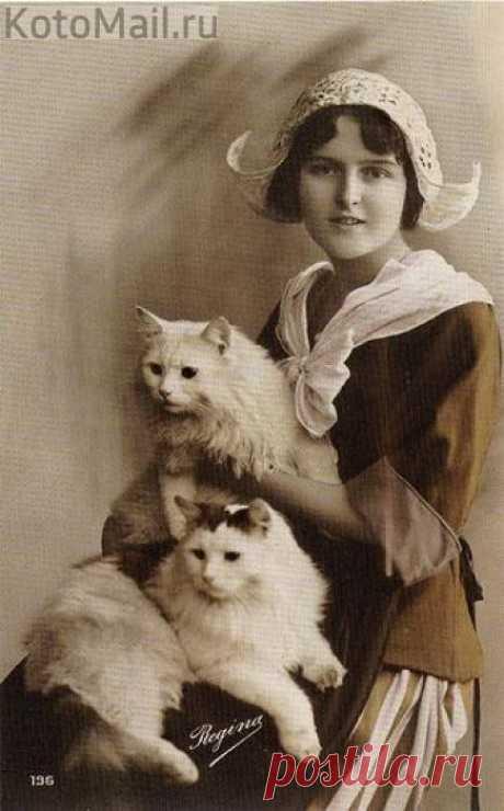 Девушка со своими котиками