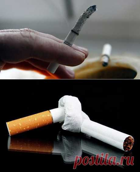 (+1) - Восемь мифов, которые мешают бросить курить   Среда обитания