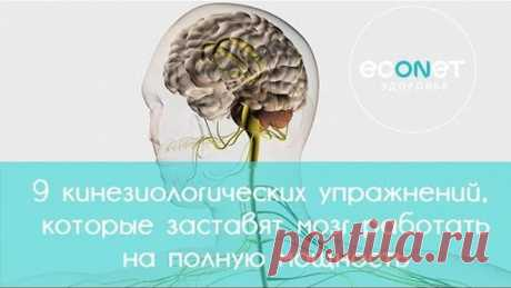 9 kinesiological exercises which will force a brain to work at full capacity