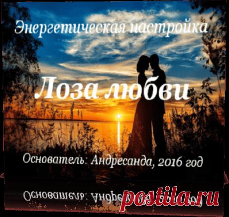 Энергетическая настройка Лоза любви — Андресанда