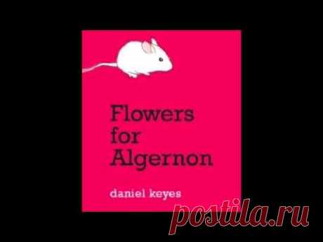 Flowers for Algernon (The Song)