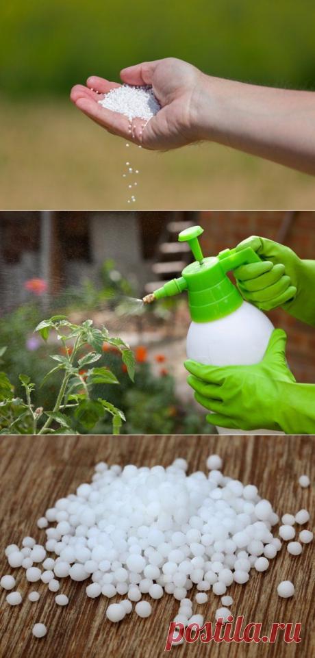 Мочевина: особенности удобрения и его применение. Все, что вы хотели знать о самом известном азотном удобрении - Интересный блог