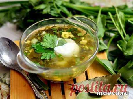Вегетарианский щавелевый суп Надо сказать, что щавелевый суп полезен изобилием витамина С, который так необходим для организма человека. К тому же вкус и красота этого блюда не оспоримы. Есть и еще одно преимущество – этот суп готовится очень быстро.