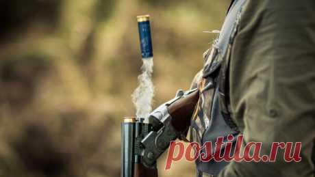 Является ли охотничье ружьё оружием на самом деле? | Lockwork. Об оружии | Яндекс Дзен