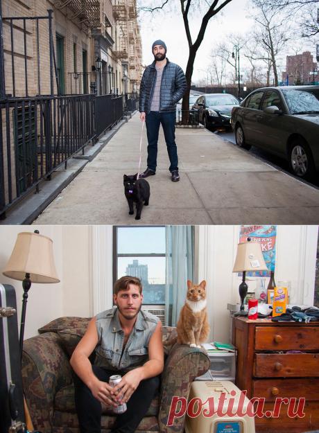 Когда мужчины и котики созданы для одного кадра — Фотошедевры