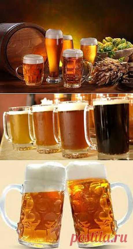 Полезные необычные свойства пива |