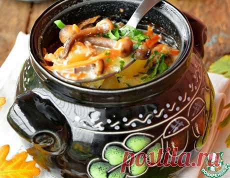 Грибной суп на топленом молоке – кулинарный рецепт