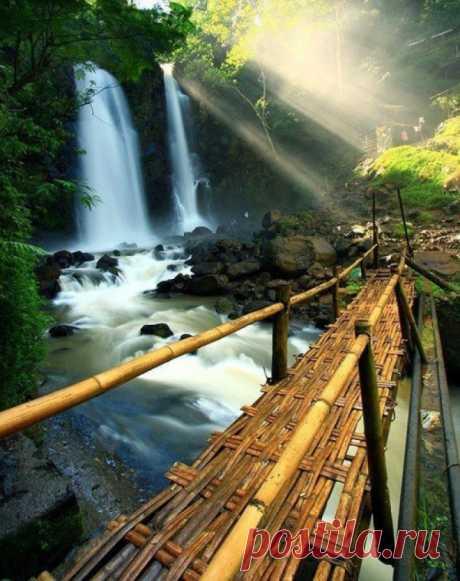 El puente de bambú cerca de la cascada, Japón