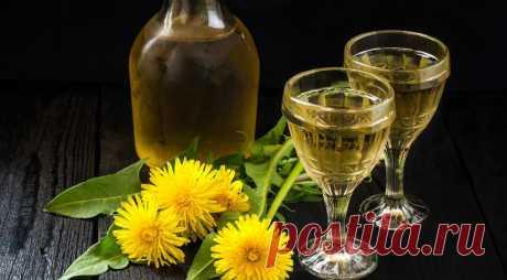 Вино из одуванчиков по-домашнему - Образованная Сова