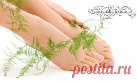 Как вылечить грибок ногтей на ногах? | Женский журнал