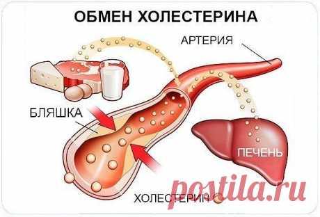Уровень холестерина можно снизить без проблем!  Льняное семя для снижения холестерина.  Понизить уровень вредного холестерина можно при помощи льняного семени (ознакомьтесь с противопоказаниями), которое продается в аптеках. Постоянно добавляйте его в пищу, которую едите. Предварительно его можно перемолоть на кофемолке. Давление не будет подскакивать, сердце станет спокойнее, а заодно улучшится работа желудочно-кишечного тракта. Все это будет происходить постепенно. Конеч...