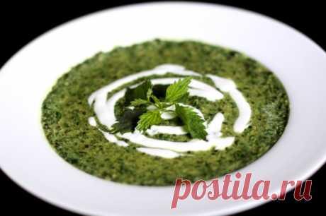 Весенний суп из свежей зелени: Суп из Крапивы и Щавеля - На Кухне Весна – то самое время года, когда организму требуется повышенное количество витаминов. Сегодня готовим суп из крапивы и щавеля.