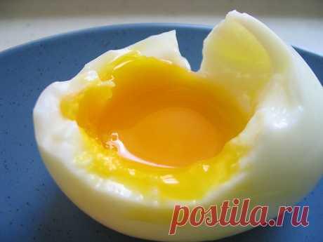 Как правильно сварить яйца вкрутую, всмятку, в мешочек  Вот вам всегда удается сварить яйцо так, как надо? Чтобы белок – твердый, а желток – тягучий и безумно вкусный? Сколько нужно варить яйца, чтобы они не переварились, а достигли нужно консистенции? Я …