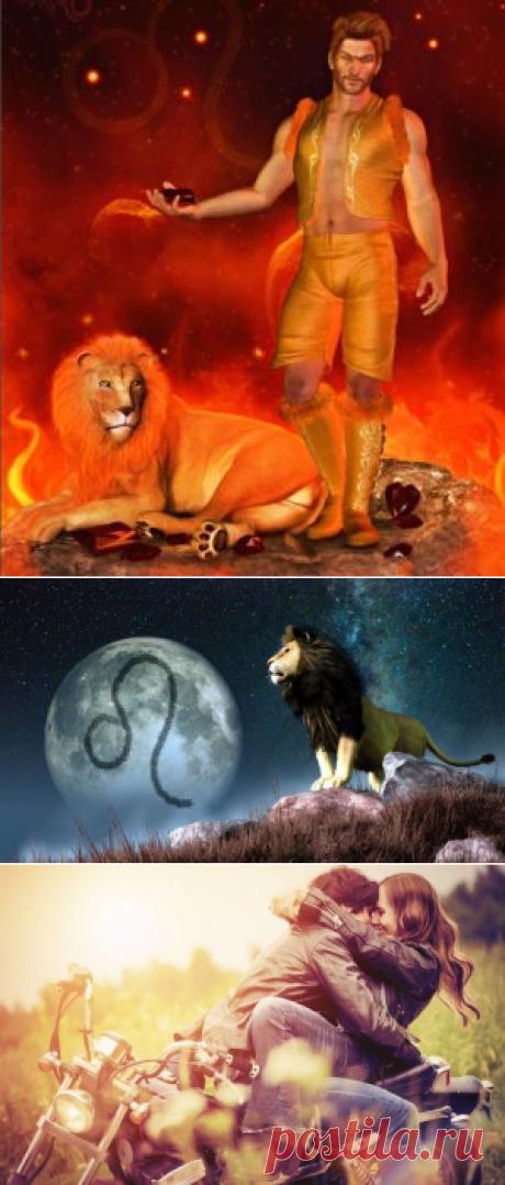 Мужчина Лев в отношениях. Как покорить мужчину Льва. | Ladynweb.ru