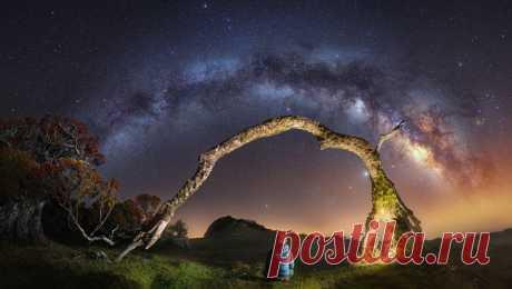 Пейзажный фотограф Alex Forst и его волшебная Мадейра - Photar.ru