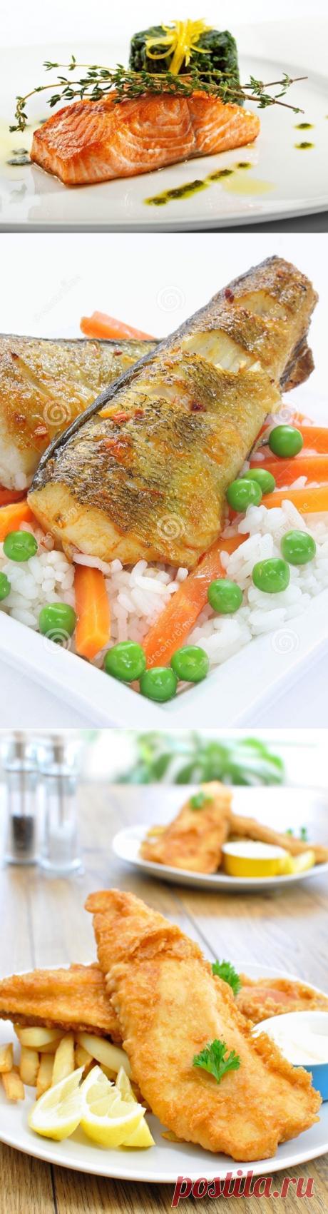 Как приготовить рыбу в мультиварке? 13 потрясающих рецептов | Блог elisheva.ru