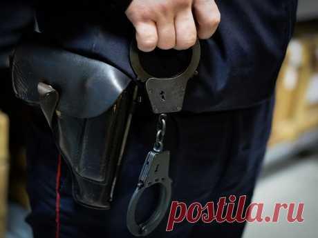 Что делать если вас незаконно задержала полиция? | Алексей Демидов