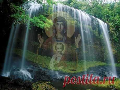 Пресвятая Богородица, храни мою семью
