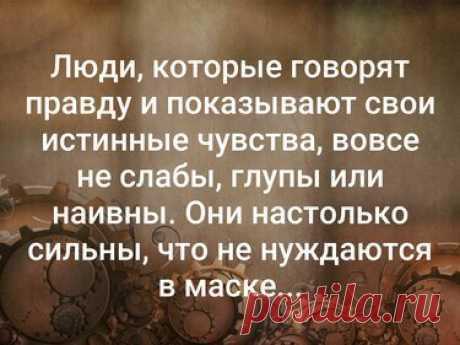 «Стена ВКонтакте» — карточка пользователя Светлана М. в Яндекс.Коллекциях