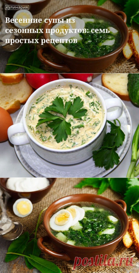 Весенний суп из сезонных продуктов