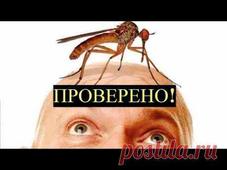 Натуральное средство от Комаров! Эффективная 100% Защита! - YouTube