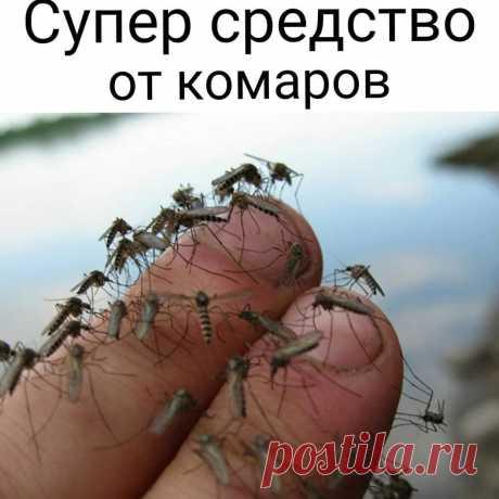 До прихода комаров осталось совсем немного...  Рекомендуем чудодейственное средство!  ⠀