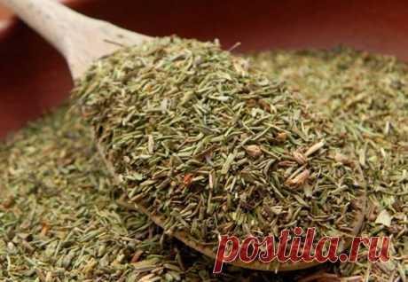 Бесценный дар природы: трава, которая лечит много недугов — Жизнь под Лампой!