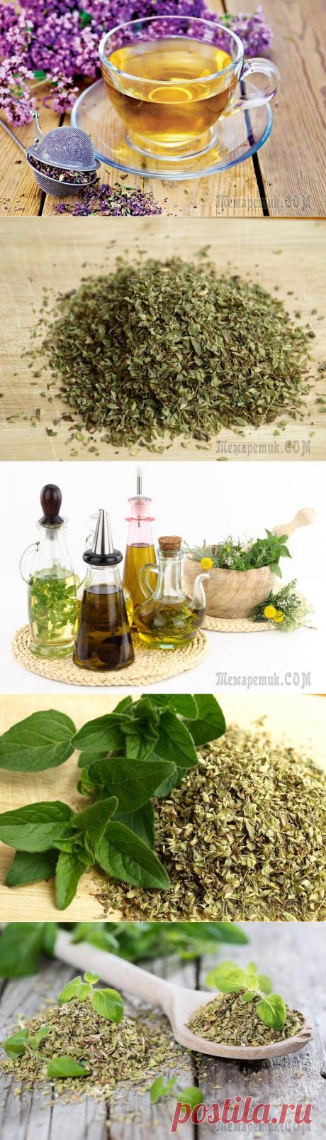 14 Практических советов по использованию масла орегано