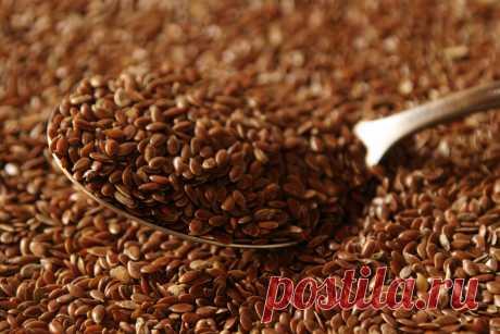 Названа опасность потребления семян льна | Новости | Вокруг Света