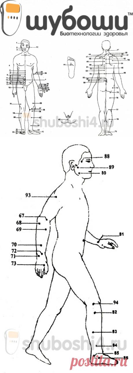 Лечение простатита шубоши простодин капли от простатита отзывы читателей