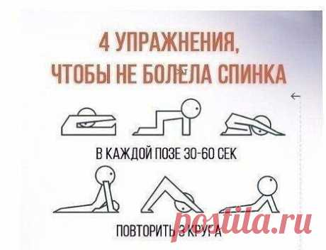 #спортивный_журнал